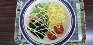 サラダうどん (002)